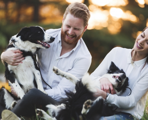 Happy couple with healthy dogs playing