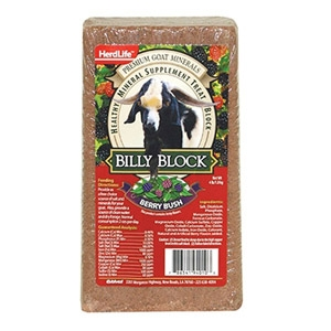 Billy Block - Berry Bush Flavor