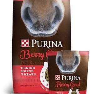 Purina Berry Good Senior Horse Treats