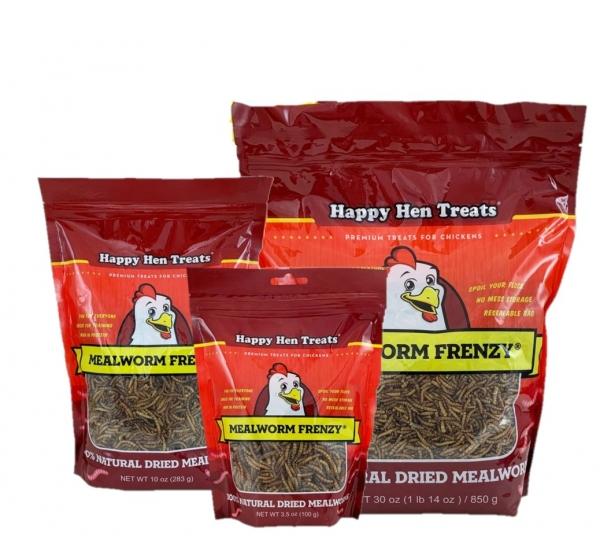 Mealworm Frenzy