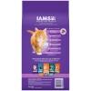 Iams Healthy Kitten label