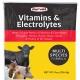 Vitamins-Electrolytes_8oz