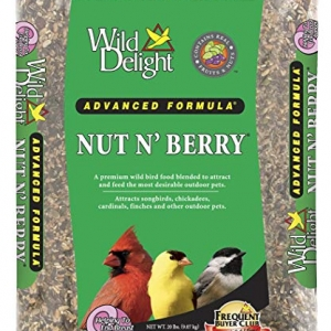 Wild Delight Nut N' Berry