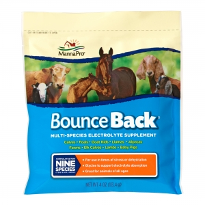 Bounce-Back-4oz
