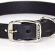 Hamilton Leather Dog Collar