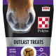 Outlast Horse Treats 3.5 lbs