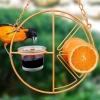 clementine-oriole-feeder2