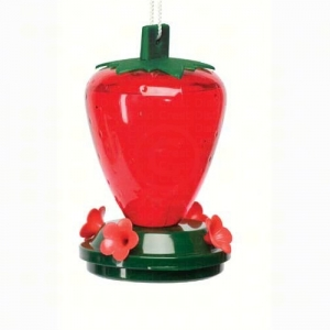 Strawberry Hummingbird Feeder 24-Ounce