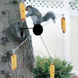 Cobs-A-Twirl Squirrel Feeder