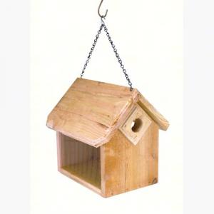 Hanging Bluebird Feeder