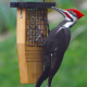 NaturesWay Tail-Prop Suet Feeder